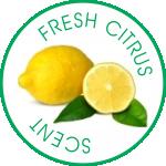 Fresh Citrus Scent